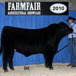 GGRR Net Worth 11W:  2009 Reserve Champion King Of The Ring and Champion Bull Calf; Stockade Roundup. 2010 Reserve Champion Yearling Bull Stockade Roundup & Olds Fall Classic